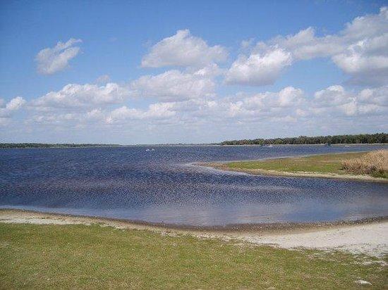 Myakka River State Park: lake