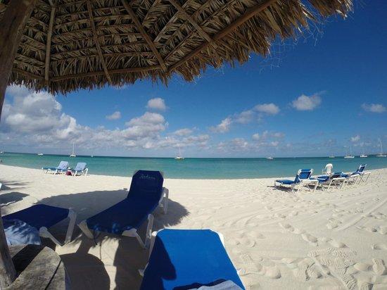 Hilton Aruba Caribbean Resort & Casino: Radisson Aruba Beach