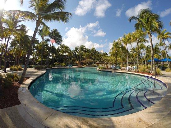 Hilton Aruba Caribbean Resort & Casino: Radisson Aruba Pool and Grounds