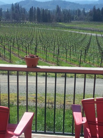 Wine Hopper Tours: Lunch over the vineyard