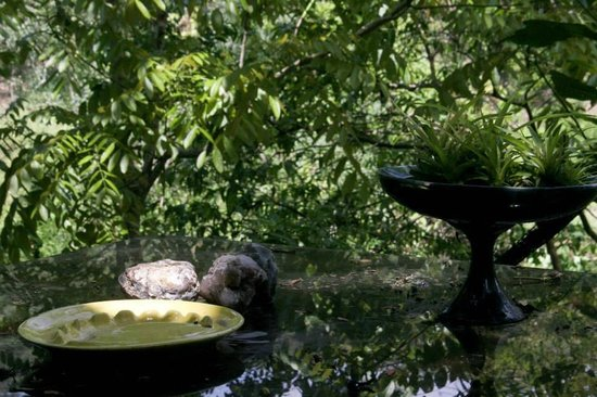 Bromelia Nature Lodge Retreat / Healing Center: view from dining area