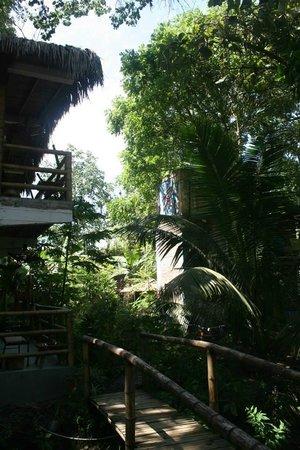 Bromelia Nature Lodge Retreat / Healing Center: outside my villla