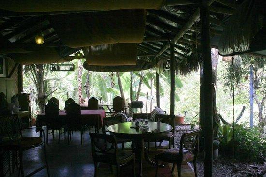 Bromelia Nature Lodge Retreat / Healing Center: dining area