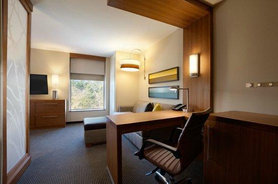 Hyatt Place Houston / The Woodlands : Corner King Work Area