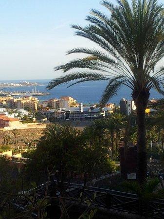 Melia Jardines del Teide : La vue
