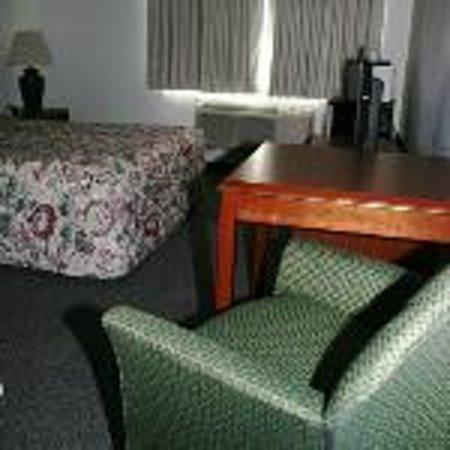 Ponderosa Motel : Single