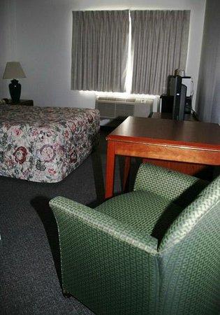 Ponderosa Motel : Basic single room