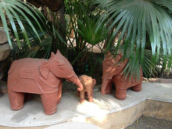 Ajit Bhawan : grounds decor