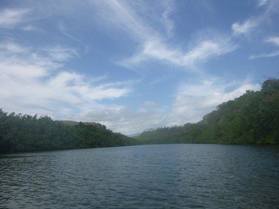 Kayak Wailua : Kayaking the Wailua River