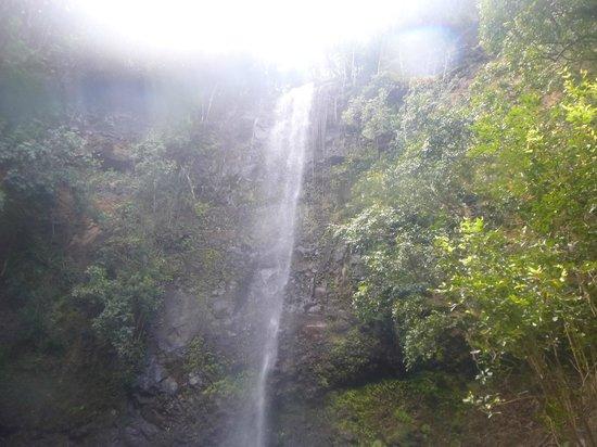Kayak Wailua : Waterfall
