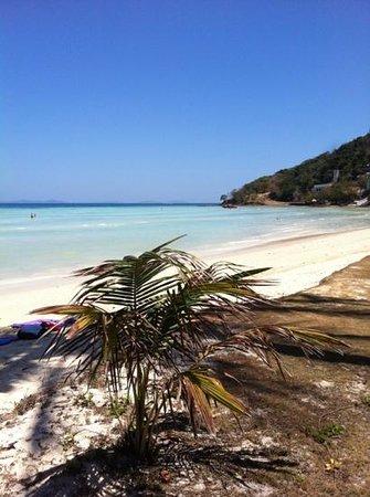 Phi Phi Island Village Beach Resort : la plage