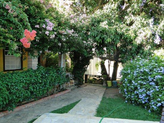 Telhado Verde by HTL: Jardim e apartamento