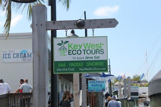 Key West Eco Tours: Eco Tours