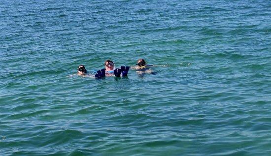 Key West Eco Tours: Snorkeling