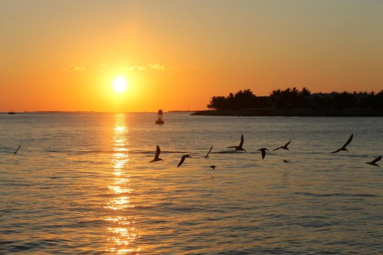 Key West Eco Tours: Sun set on Key West