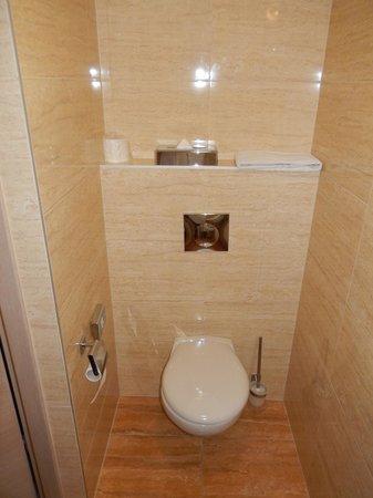 Hotel Galaxy : Apartament - toaleta