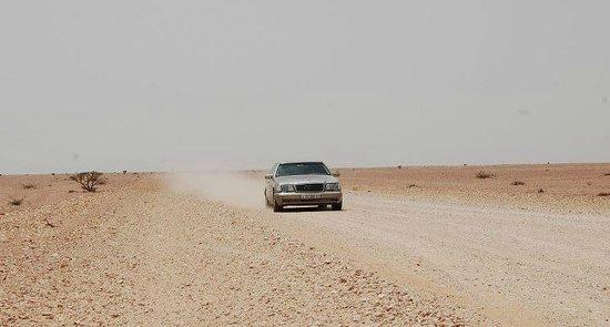Arabian Oryx Sanctuary : The lonely graded track to the santuary