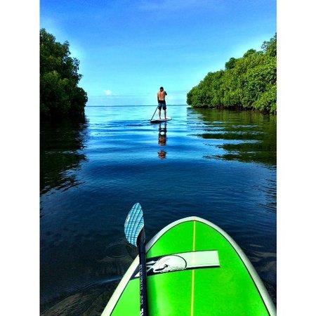 Waidroka Bay Resort : Paddle Boarding in paradise
