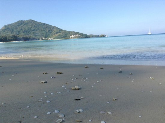 Nai Yang Beach: Ракушки