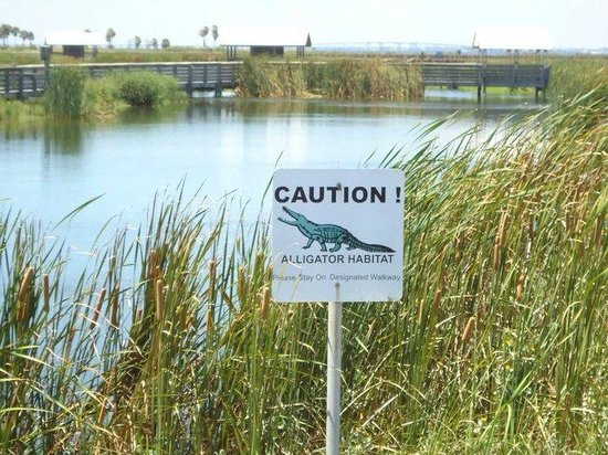 South Padre Island Birding and Nature Center : Beware!