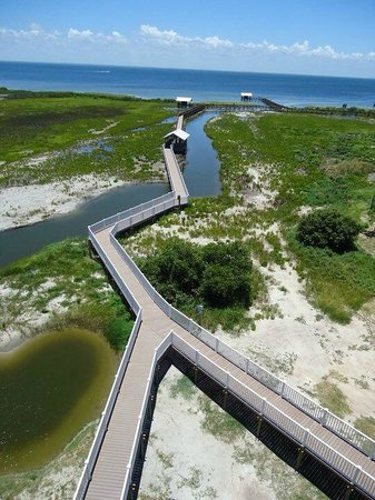 South Padre Island Birding and Nature Center : View of Boardwalks