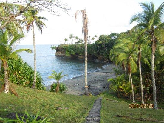 Morgan Bay Hotel: The beach