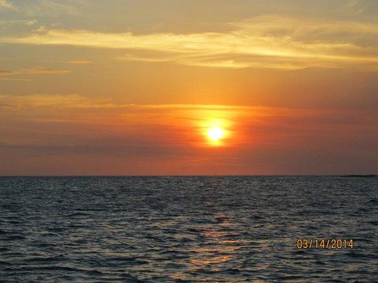 Blue Dolphin Sailing : sunset