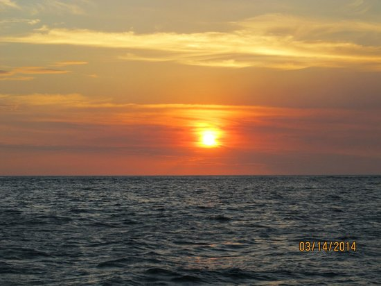 Blue Dolphin Sailing : love sunsets