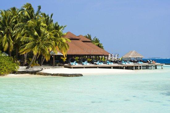 Kurumba Maldives: Beach Bar - The best cocktails in the Island