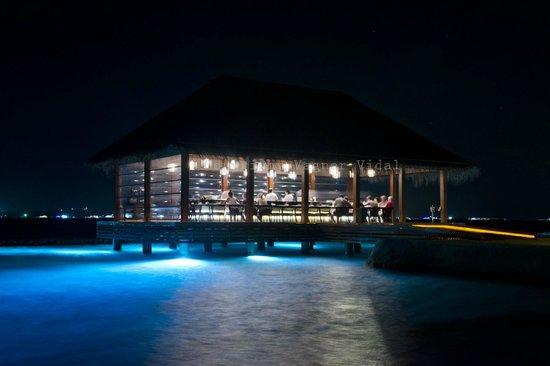 Kurumba Maldives: Hamakaze - Japanese restaurant