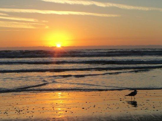 Wakulla Suites : Sunrise over the Atlantic Ocean