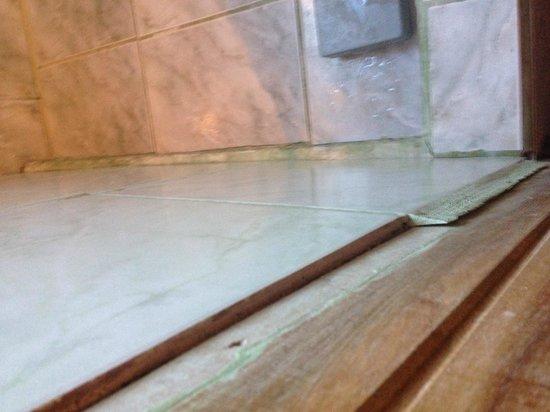 Hotel Jardines de Monteverde: bathroom tile