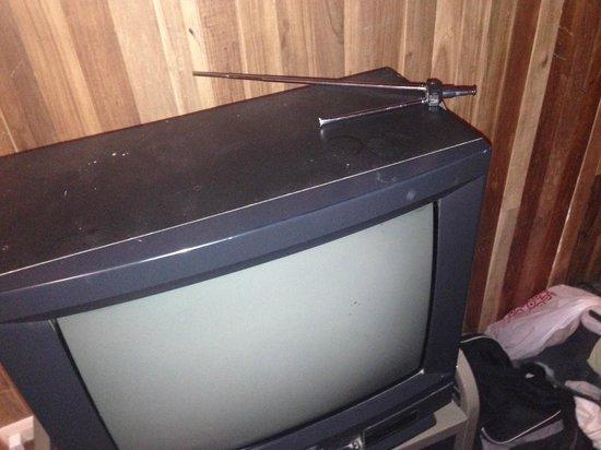 Hotel Jardines de Monteverde: TV just for decoration