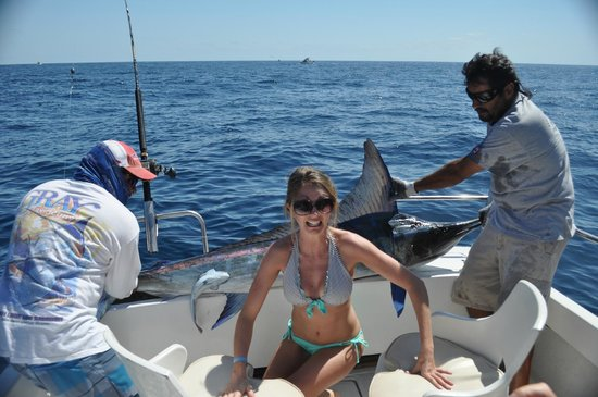 ABY Charters : One of ten marlin caught (and released)