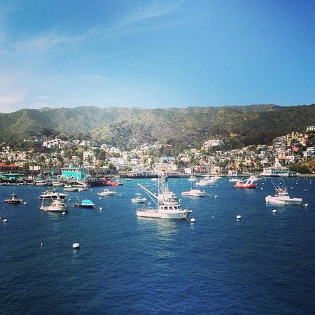 Hermosa Hotel: Arriving via Catalina Express