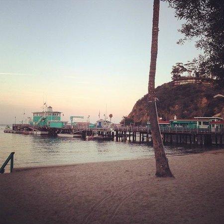 Hermosa Hotel : Avalon Pier