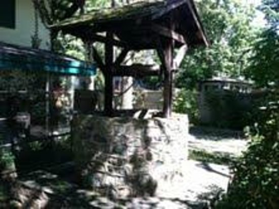 The Wishing Well Guesthouse: Spring morning by the well.