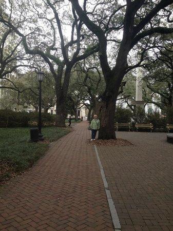 Savannah Historic District: Historic square