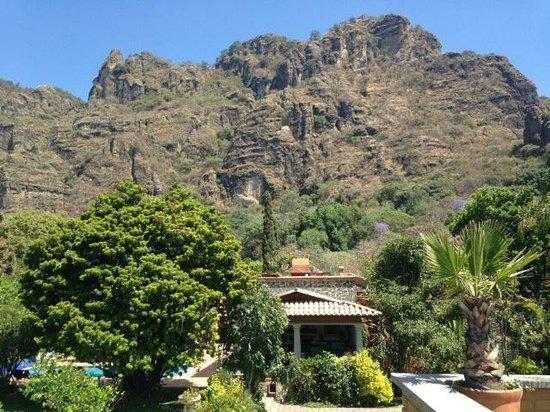 La Buena Vibra Retreat & Spa: Vista