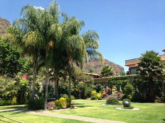 La Buena Vibra Retreat & Spa: Jardín