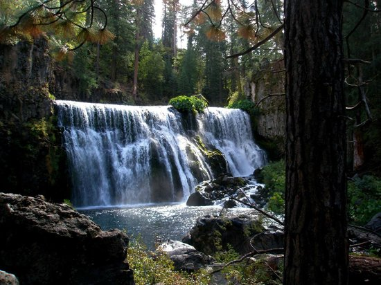 McCloud Hotel : McCloud's Middle Falls - just 5 miles away