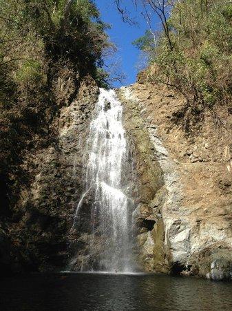 Montezuma Falls: Cascada