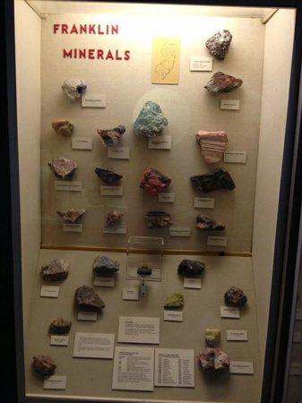 Morris Museum : Rocks from Franklin, NJ