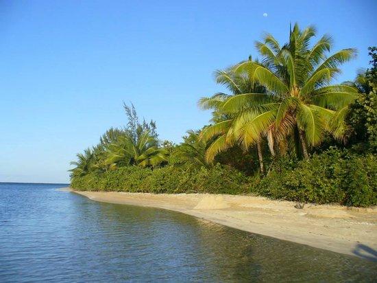 The Fajardo Inn: The beach we found
