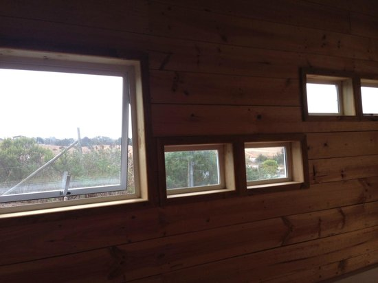 The Sirena Insolente Hostel: View out the window - no beach view but lovely natural setting :)