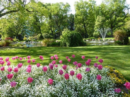 Queenstown Garden: A fonte emoldurada pela flores
