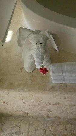 Azul Beach Resort Sensatori Mexico: Towel Magic daily!