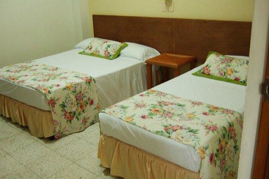 Valdivia Plaza Hotel