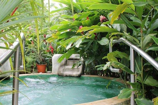 Baldi Hot Springs Hotel Resort & Spa: Le bain froid, par froid je veux dire un peu moins chaud