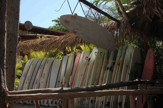 Costa Riki Apartments: Santa Teresa Beach is great for surfing!